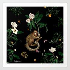 Monkey World: Amber-Ella Art Print