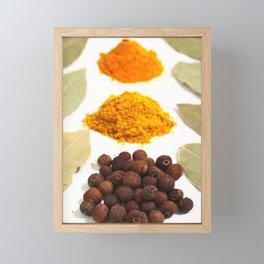 Spices Framed Mini Art Print