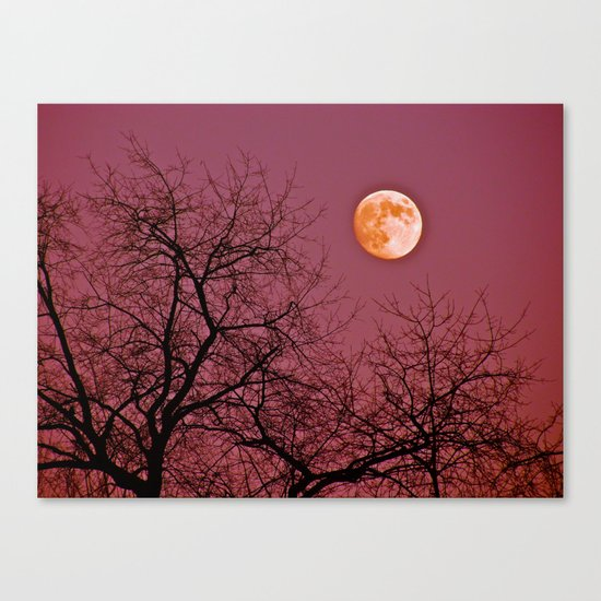 Good Night Moon Canvas Print
