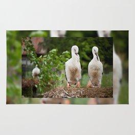 Orphaned two White Storks Rug