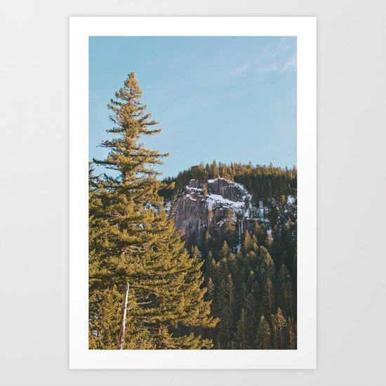 Trees in the Mountains Art Print