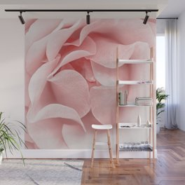 Pink flora Rose Bud- Roses and flowers Wall Mural