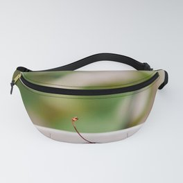 Cherries Fanny Pack