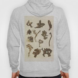 Copper Formations Hoody
