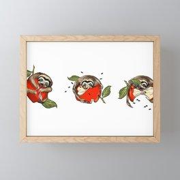 Baby Sloth Meets Apple — L Diane Johnson Framed Mini Art Print