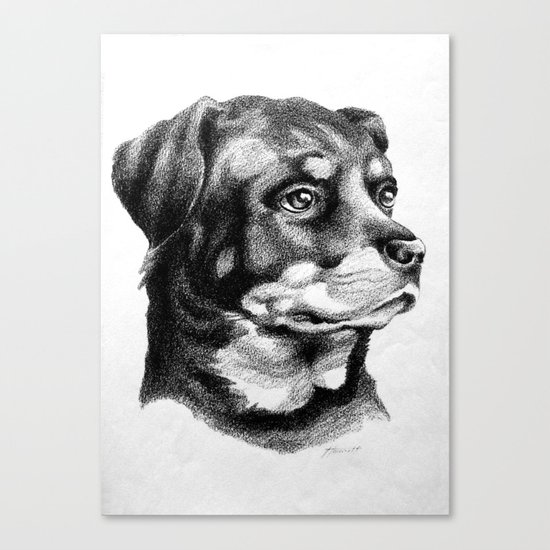 Rottweiler Devotion Canvas Print