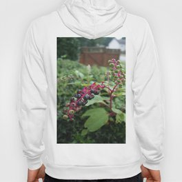 Pretty Deadly-Pokeweed DPG150828a Hoody