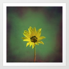 The yellow flower of my old friend Art Print