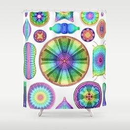 Ernst Haeckel Rainbow Diatoms Shower Curtain