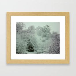 WinterSky #3 Framed Art Print