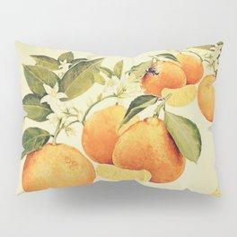 Oranges and their blossoms Pillow Sham