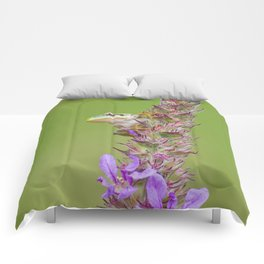 The little green frog Comforters