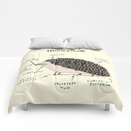 Anatomy of a Hedgehog Comforters