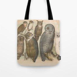 Naturalist Owls Tote Bag