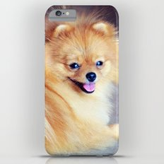 PRECIOUS POMERANIAN Slim Case iPhone 6 Plus