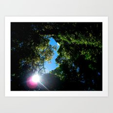 Life in the Tree Tops Art Print