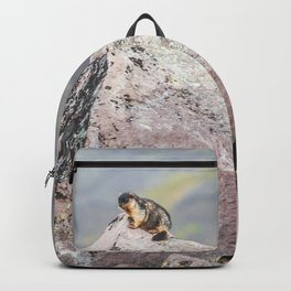 Extremal Groundhog  or King of the Mountain Backpack