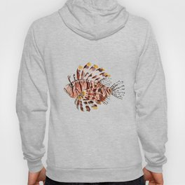 Lionfish Hoody