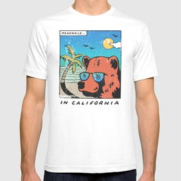 Meanwhile T-shirt