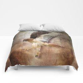 Evening Hawk Comforters