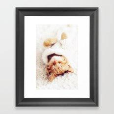 Sleeping cat Framed Art Print
