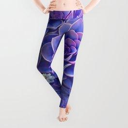 """""""Bouquet of pastel violet exotic succulents"""" Leggings"""