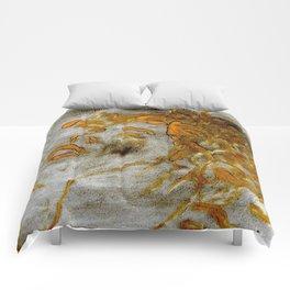 Medusa-The Trauma Comforters