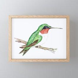Hummingbird Jewel Framed Mini Art Print