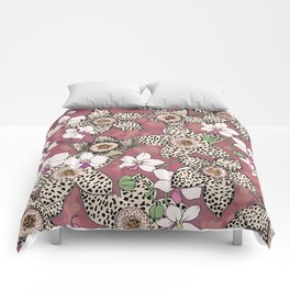 Spotted stapelia flowers and Orchid Comforters