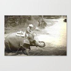 Elephant Fun Canvas Print
