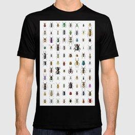 Beetlemania / Get your entomology on! T-shirt