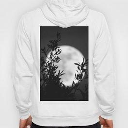 Full Moon Leaves Hoody