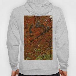 Red Maple 2017 Hoody