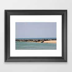 Island of Seals Framed Art Print