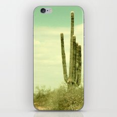 Desert Cactus iPhone & iPod Skin