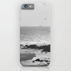 Beach, Calais, France. iPhone 6s Slim Case