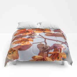 Signs of Spring Comforters