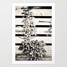Ivy on Steel Art Print