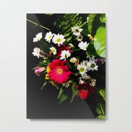Spring Time Daisies Metal Print