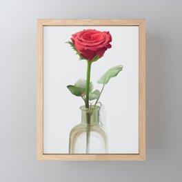 Smell the Rose Framed Mini Art Print