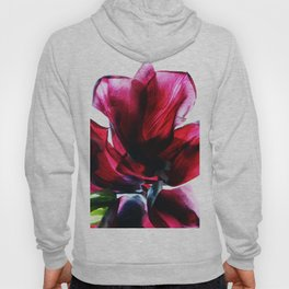 Flower Petals Artfully Arranged Hoody