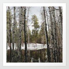 Snowy Forest Grammer Art Print