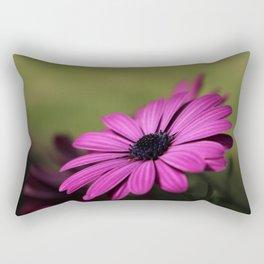 Purple Osteospermum Rectangular Pillow