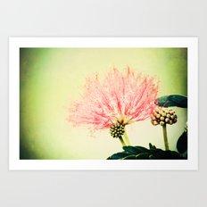 Fairy Floss Art Print