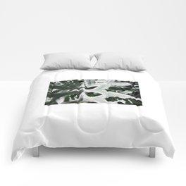 Shadow Comforters