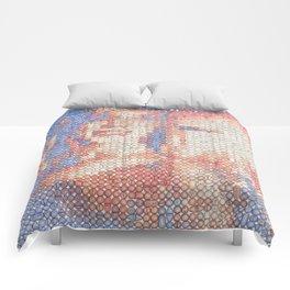 $2.5K Comforters