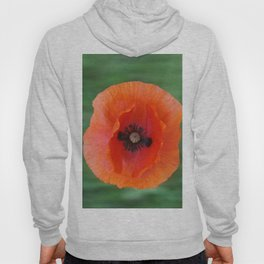Floating poppy Hoody