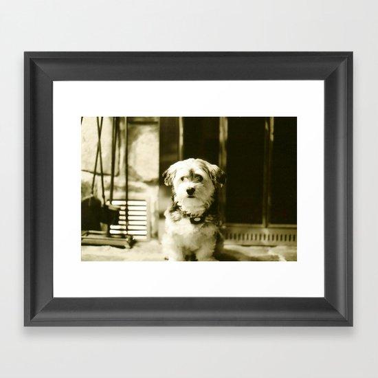Watch Dog Framed Art Print