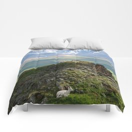 A Day In Denali Park Comforters