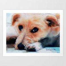 Toffee dog Art Print